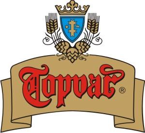 Topvar logo
