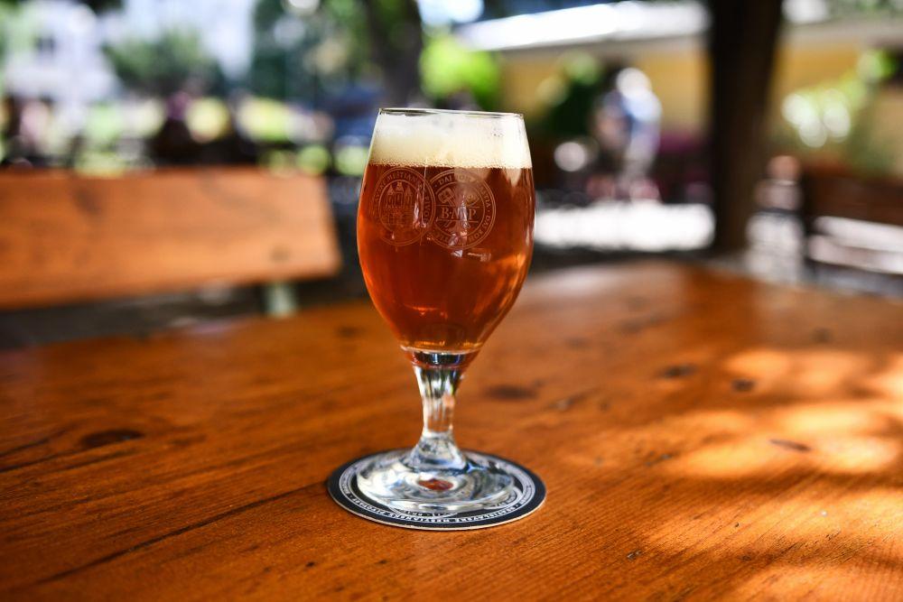 Meštiansky pivovar - IPA