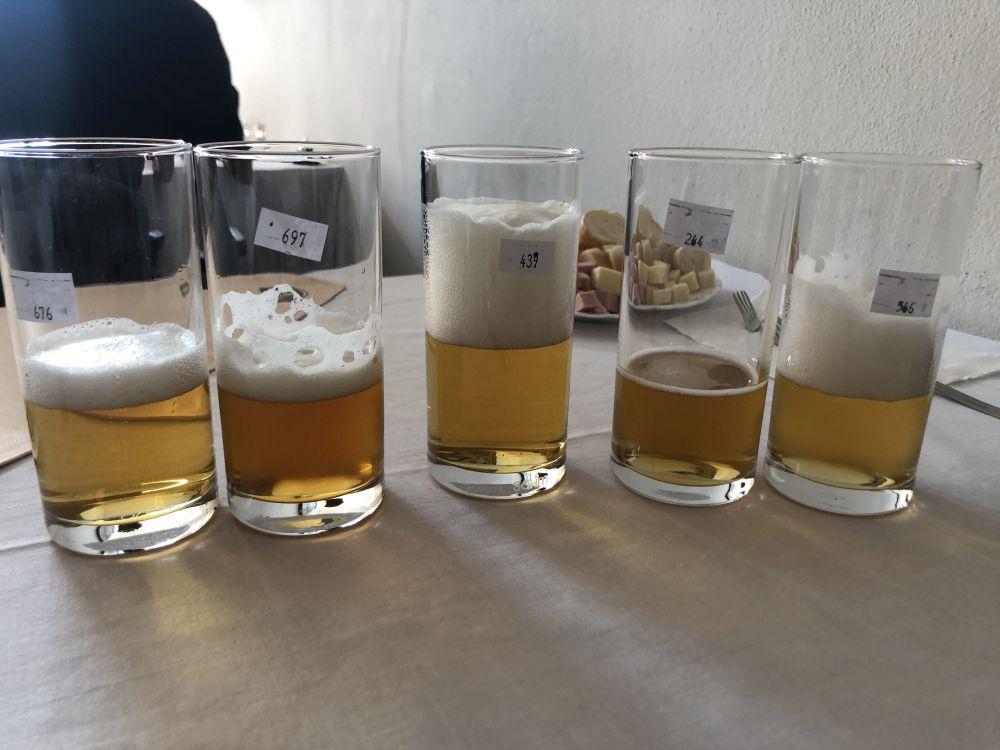 Degustačné súťaže - Slovenská pivná korunka