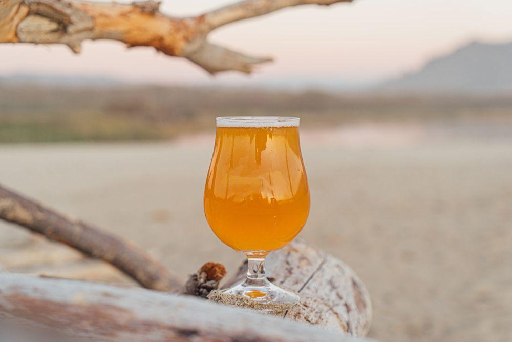 Pivo - suchý január