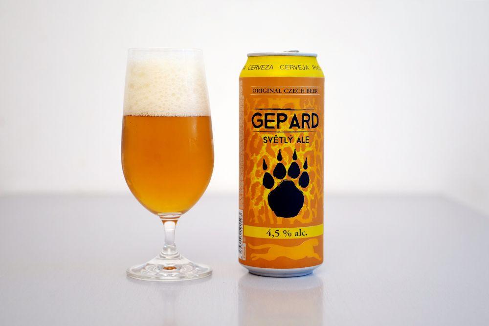 Konrad - Gepard
